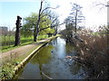 TQ3296 : The New River in Town Park, Enfield by Marathon