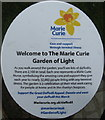 NT2574 : Welcome to the Marie Curie Garden of Light by M J Richardson