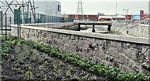 J3674 : The Connswater, Belfast - March 2017(1) by Albert Bridge