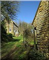 SY5195 : Cottage and cider house, Mappercombe by Derek Harper