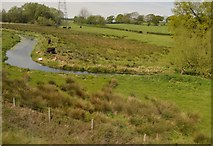 ST4567 : River Kenn by N Chadwick
