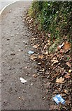 SX9065 : Litter on Penny's Hill, Torquay by Derek Harper