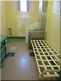SU7273 : Inside a Cell by Bill Nicholls