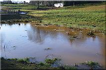 TQ5940 : A new lake, Grosvenor Park by N Chadwick
