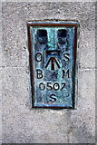 NZ2814 : Benchmark on Market Hall clock tower by Roger Templeman