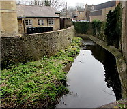 ST7748 : River Frome, Frome by Jaggery