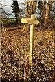 SE3564 : Signpost, Kettlewell Carr by Derek Harper