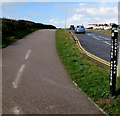 SS8077 : Wales Coast Path alongside Mallard Way, Porthcawl by Jaggery
