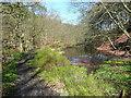 SD9830 : Millpond above Bridge Clough, Wadsworth by Humphrey Bolton