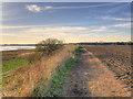 SJ4681 : Coastal Path at Hale Head by David Dixon