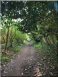 TQ2115 : Blackgate Lane, Henfield by Simon Carey