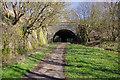 SJ8454 : Birchenwood Tunnel by Stephen McKay