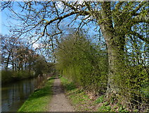 SP7289 : Market Harborough Branch of the Grand Union Canal by Mat Fascione