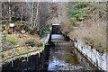 NN4907 : Inlet channel to Loch Katrine by Jim Barton