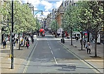 TQ2881 : Blossom on Oxford Street by Anthony O'Neil