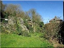 SX1454 : Ruined cottage by Penpoll Mill by Derek Harper