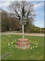 TG3130 : Witton (near Worstead) village sign by Adrian S Pye
