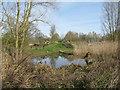 TL3369 : Paddy's pond by M J Richardson