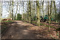 SU6985 : Logging in Nott Wood by Roger Templeman