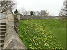 SE6052 : York City Walls by Graham Hogg