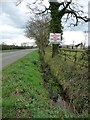 SJ7569 : Ditch on the south side of Goostrey Lane by Christine Johnstone