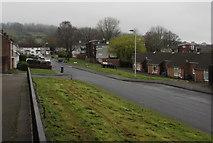 ST2896 : Heol y Pwca, West Pontnewydd, Cwmbran by Jaggery