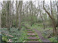 TL2971 : Path into The Thicket by M J Richardson