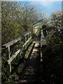 SY4192 : Seatown: footbridge on the diverted coast path by Chris Downer
