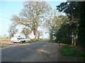 TL1141 : Northwood End Road, Southill by Humphrey Bolton