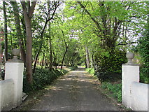 ST3050 : Entrance drive to The Towans, Burnham-on-Sea by Jaggery