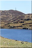 NR3795 : Greylag and Canada geese beside Loch Fada by Russel Wills