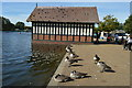 TQ2780 : Boathouse and geese by N Chadwick