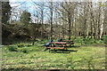 NX9383 : Picnic Area at Ellisland by Billy McCrorie