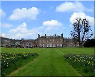 TR0650 : Godmersham Park House by pam fray