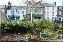 NX4355 : Public Garden, Wigtown by Billy McCrorie