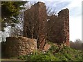NT3497 : Remains of a castle by James Allan