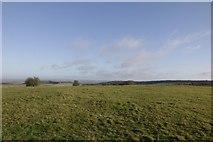 SU5482 : Top of Lowbury Hill by Bill Nicholls