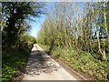 SO4307 : Country road north of Kingcoed by Philip Halling