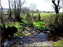 H3168 : Small stream, Curraghmulkin by Kenneth  Allen