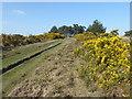 TQ4628 : Path up to Camp Hill by Marathon