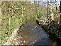 SD9726 : River Calder near Hebden Bridge by Paul Harrop