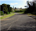 ST3094 : Dead end road on the southeast side of The Alders, Llanyravon, Cwmbran by Jaggery