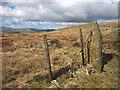 NY5103 : Stone fence post on Capplebarrow by Karl and Ali