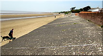 ST3049 : One man and his dog on the beach, Burnham-on-Sea by Jaggery