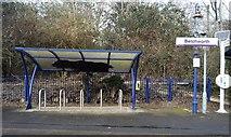 TQ2151 : Bike shelter, Betchworth Station by N Chadwick