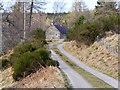 NJ0221 : Track to Croftmaquien by David Dixon