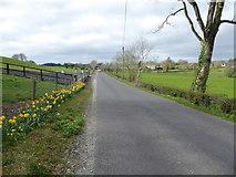 H5071 : Deverney Road, Recarson by Kenneth  Allen