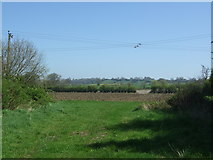 SP0058 : Footpath and entrance to fields off Stockwood Lane by JThomas