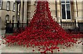 TA0928 : Weeping  Window  lower  section by Martin Dawes