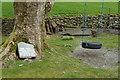 NY3105 : Potentially dangerous swing, Thrang Farm, Chapel Stile by Mike Pennington